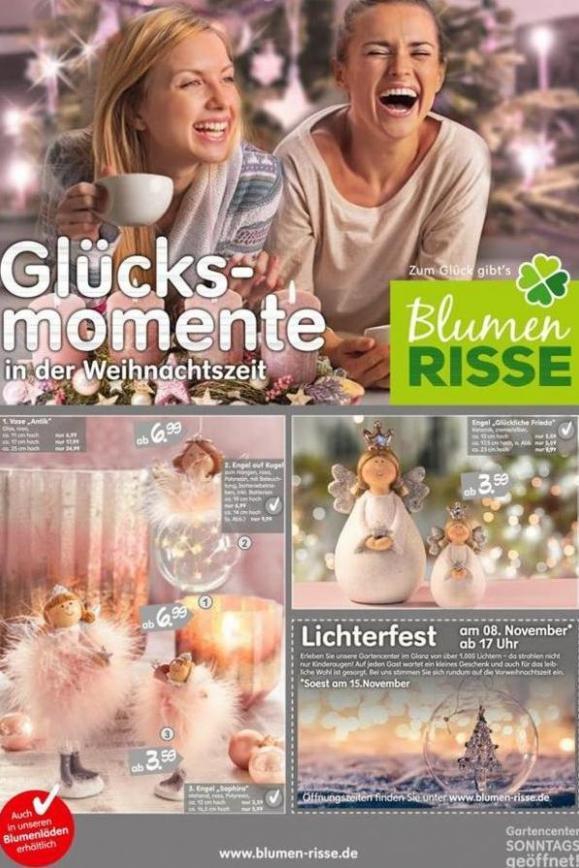 Glücks-momente. . Blumen Risse (2019-11-15-2019-11-15)