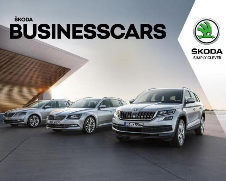Škoda BUSINESSCARS . Skoda (2020-12-31-2020-12-31)