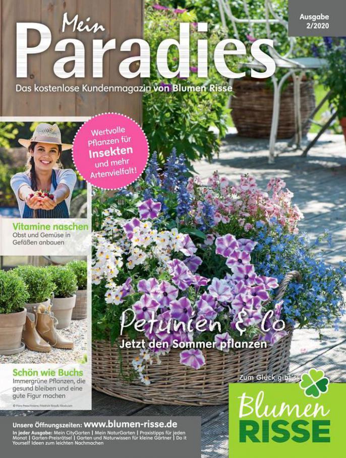 Mein Paradies . Blumen Risse (2020-06-30-2020-06-30)