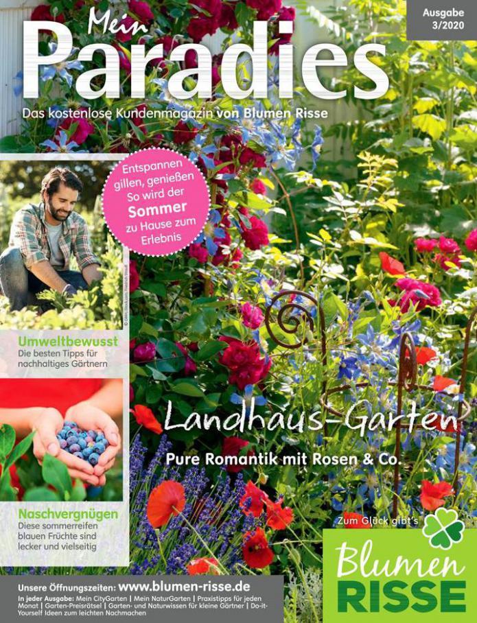 Mein Paradies . Blumen Risse (2020-07-31-2020-07-31)