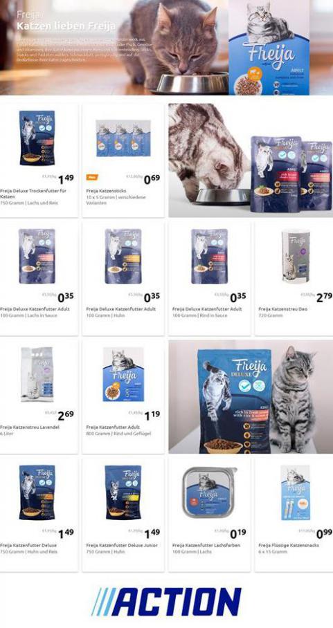Katzen lieben Freija . Action (2021-02-28-2021-02-28)