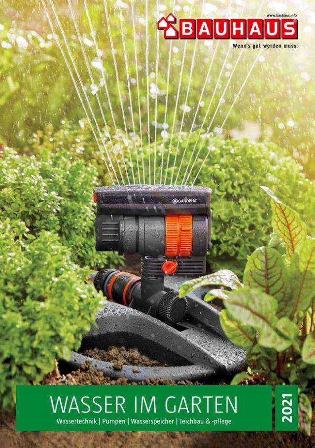 Wasser im Garten 2021 . Bauhaus (2021-12-31-2021-12-31)